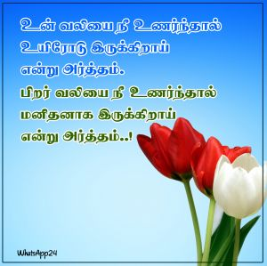 Mean - Tamil Image Quotes for WhatsApp Status, WhatsApp DP